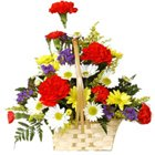 Blooming Mixed Gerberas and Carnations Arrangement