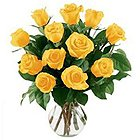 Blossoming Twelve Yellow Roses in a Vase with Pure Passion