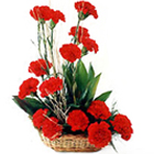 18 Red Carnations Arrangement