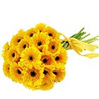 Sweetest Yellow Gerberas Bouquet
