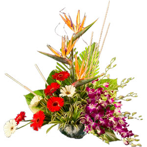 Special Arrangement of Exotic Flowers  to India.