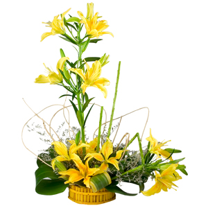 Cherished Arrangement of Stemmed 6 Yellow Lilies