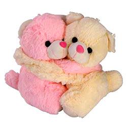 Twin Teddy