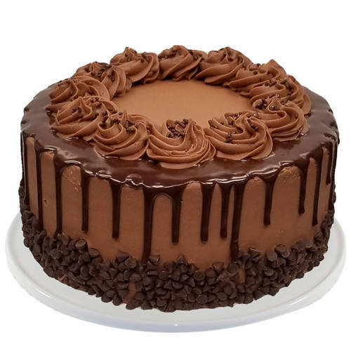 Order Online Chocolate Cake from Taj or 5 Star Hotel Bakery