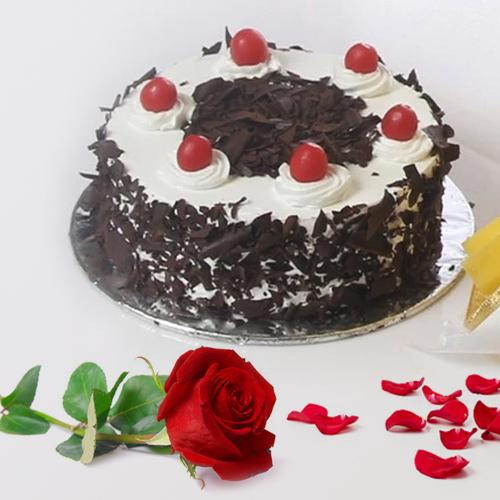 Shop Online Black Forest Cake with Red Rose