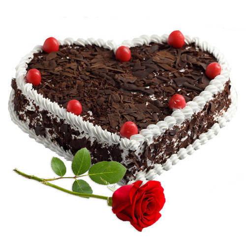 Gift Black Forest Cake in Heart Shape with Single Rose Online