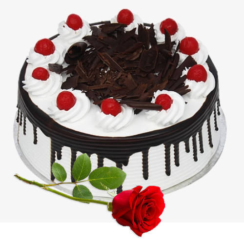 Book Eggless Black Forest Cake with Single Rose