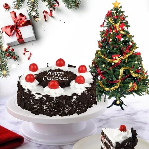 Yummy Black Forest Cake with Christmas Decor Tree