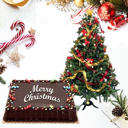 Lip-Smacking Chocolate Cake with Festive X-mas Tree
