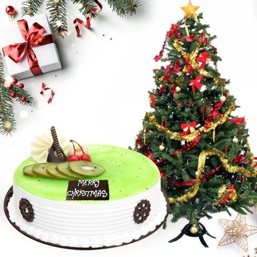Yummy Kiwi Cake with Christmas Decor Tree