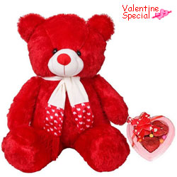 Valentines Day Gift of Red Teddy with Chocolates for Love