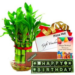 Admirable Indoor Bamboo Plant with Handmade Chocolate, Pizza Hut Gift Voucher N Birthday Card