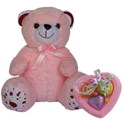 Adorable Teddy with Heart Shape Handmade Chocolates