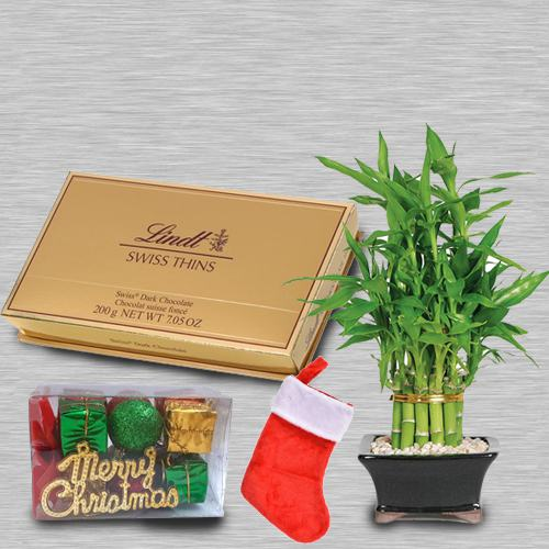 Two Layered Lucky Bamboo with Lindt Swiss N Santa Stockings