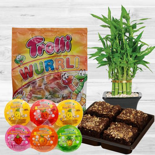 Splendid Selection of Bamboo Plant with Sweet Delights