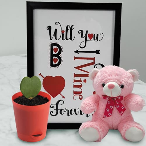 Amazing Photo Frame with Cute Teddy n Hoya Heart Plant