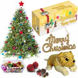 Exquisite Christmas Arrangement with Festivity