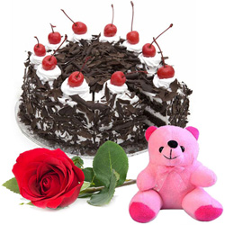 Joyous Anniversary Gift of Single Rose with Teddy and Black Forest Cake