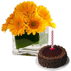 Online Chocolate Cake with Candles and Gerberas in Vase
