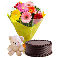 Online Teddy with Chocolate Cake and Mixed Gerberas Bouquet