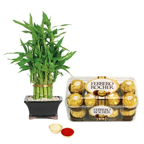 Ferrero Rocher Chocolates N 2 Tier Bamboo Plant