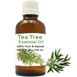 Mesmerizing Pack of Tea Tree Essential Oil