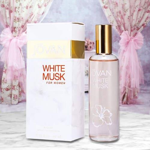 Online Jovan White Musk Cologne for Women