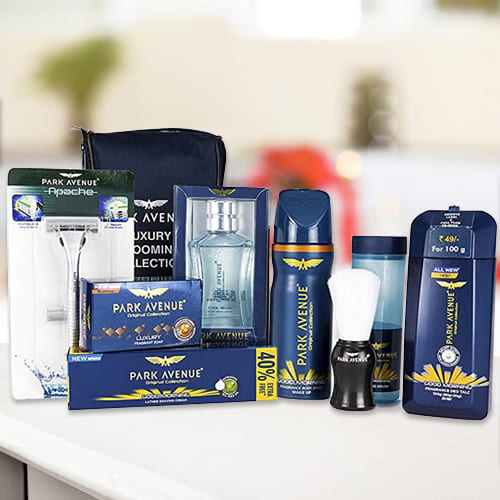 Appealing Park Avenue Mens Grooming Kit for Dad