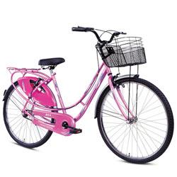 Mesmerizing BSA Ladybird Splash Bicycle