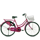 Ultimate BSA Rangoli Bicycle