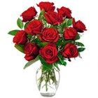 Rich Red Roses in a Vase