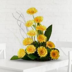 Charming Yellow Beauty of 12 Gerberas Arrangement