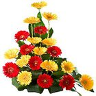 Breathtaking 20 Hued Gerberas Bouquet