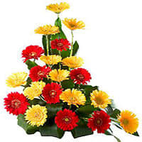 India Florist to deliver Flowers to India