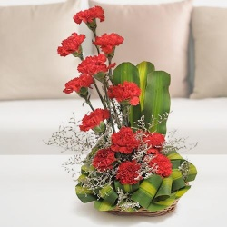 Enthralling Arrangement of 12 Red and Pink Carnations