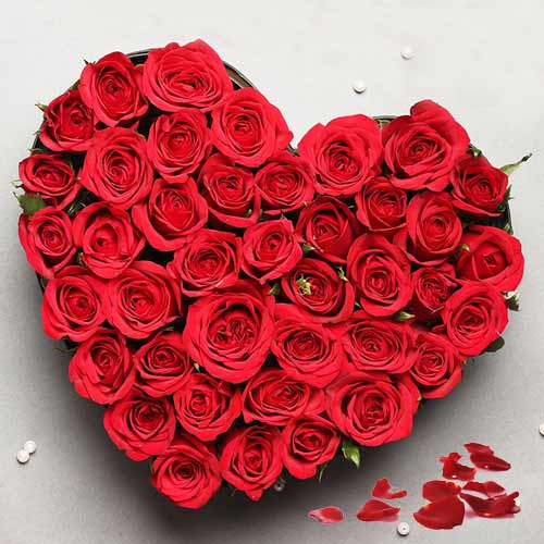 Breathtaking 2 Dozen Red Roses in a Heart-shaped Arrangement