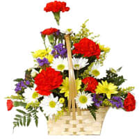 Basket Arrangement of Carnations and Gerberas Online