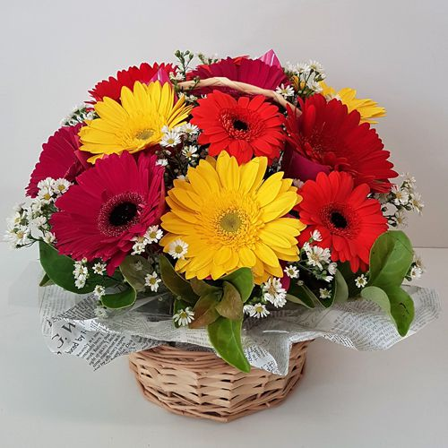 Color-Coordinated Mixed 12 Gerberas Bouquet of Love