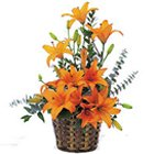 Bouquet Of charming Lilies