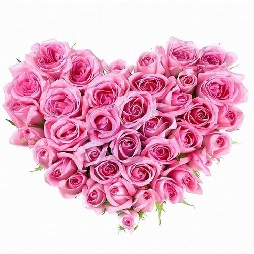 Deliver Heart Shape Arrangement of Pink Roses for Rose Day