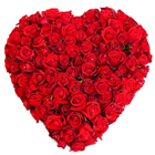 Majestic arrangement of 150 Dutch Red Roses in heart shape