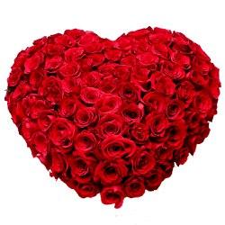 Majestic arrangement of 150 Dutch Red Roses in heart shape
