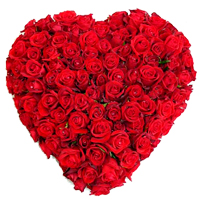 Magical Heart Shaped 150 Dutch Red Roses Arrangement