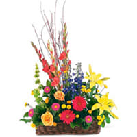 Dramatic Arrangement of Mixed Flowers