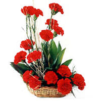 Bright Red Carnations Basket