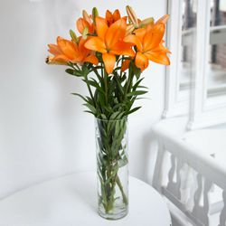 Bright and Beautiful Lilies in Vase