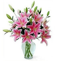 Classic Decorative Vase Filled with Pink Lilies