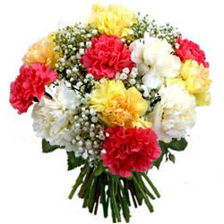 Attractive Bunch of Colorful Carnations