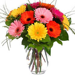 Bright Assorted Gerberas in Glass Vase