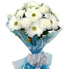 Sweetest Selection White Gerberas Bunch with Fillers